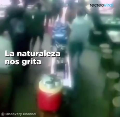 Ver video Clip